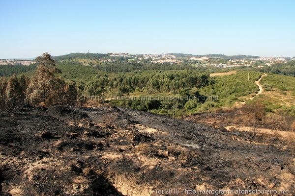 Serra da Carregueira queimada